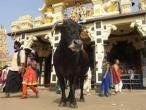 Udupi - Sri Krishna temple 32.jpg