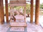 Seva-Kunj-temple-monkeys.jpg