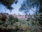 Govardhana hill 31.jpg