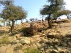 Govardhana hill 34.jpg