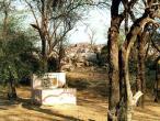 Sant-Gov Samadhi.JPG