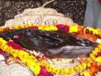 Radha Damodara deities 28.jpg