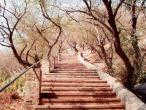 Mana stairs1.jpg