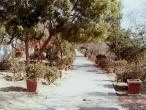 Jaipur to Sriji path 4.jpg