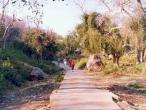 Gahvarvana path winter.jpg