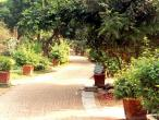 Sriji path 2.jpg