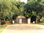 Sriji path 3.jpg