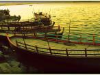 Yamuna in Mathura 18.jpg