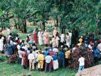 Afrika 035.jpg