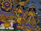 Govindadwipa deities 024.jpg