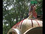 TKG Samadhi - Dalas 004.jpg