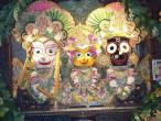 Srila Prabhupada festival 02.jpg